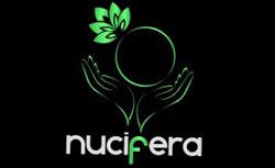 NUCIFERA ENTERTAINMENT PVT.LTD